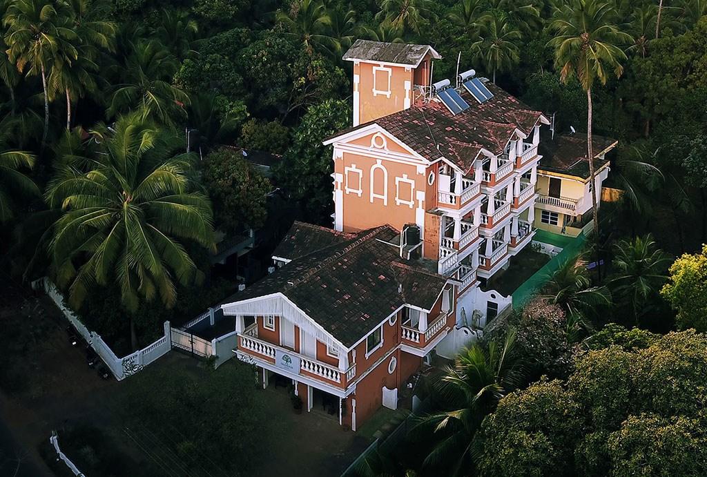 Treehouse Nova - Indie