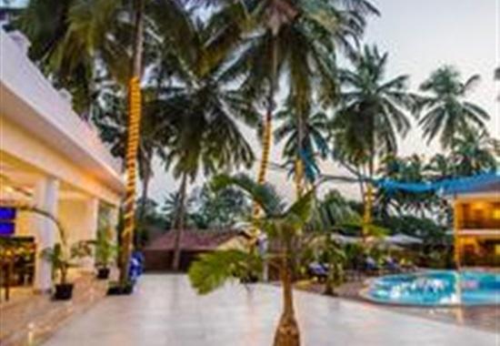 Sol Beso - Goa